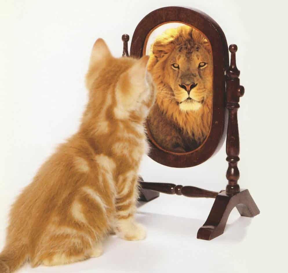 איך לפתח ביטחון עצמי
