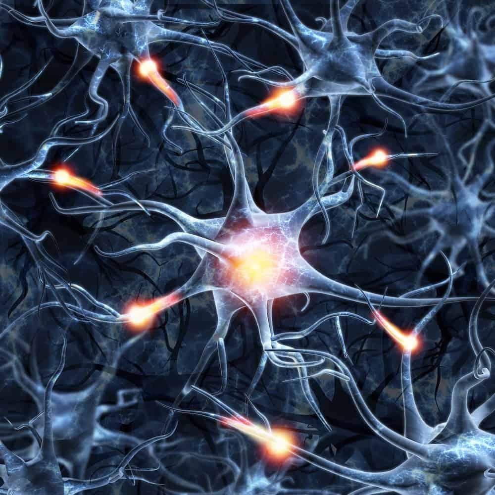 פרק 6 מהספר להתרגל להצליח על המוח התת-מודע